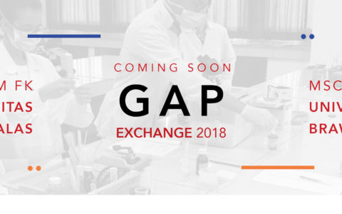 This August: GAP Exchange
